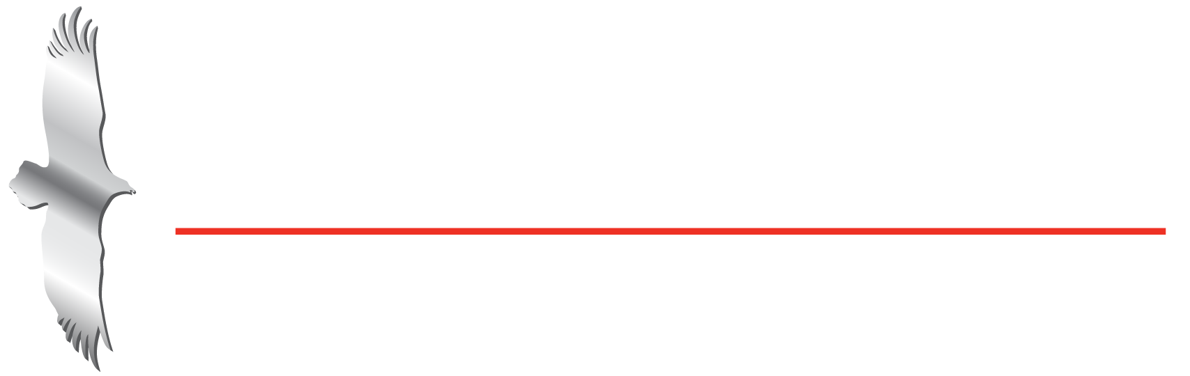 Hunter Hawk - Custom Industrial Manufacturing, Products, Services